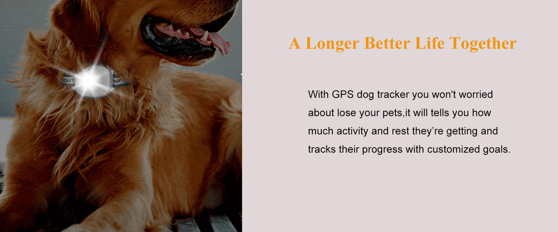 GPS Dog Tracker With Light